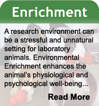 Enrichment
