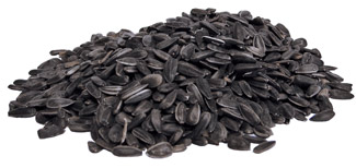 black sunflower seeds shelf bio serv sunflower seeds black 10 kg box sterile